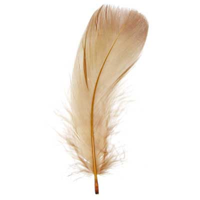 Goose Feathers 5-7in Brown (3 Headers x6g ea) image